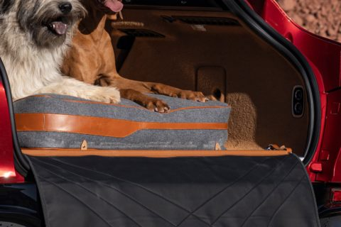 Aston Martin DBX Pet Pack (1)