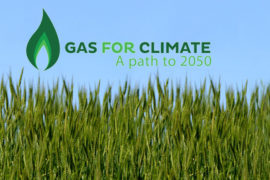 Gas For Climate- SNAM - Gas rinnovabili