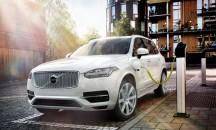 Volvo-XC90-ibrida-216x130.jpg